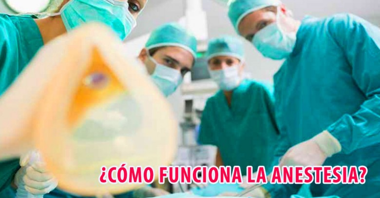 ¿Cómo funciona la anestesia en nuestro cuerpo?