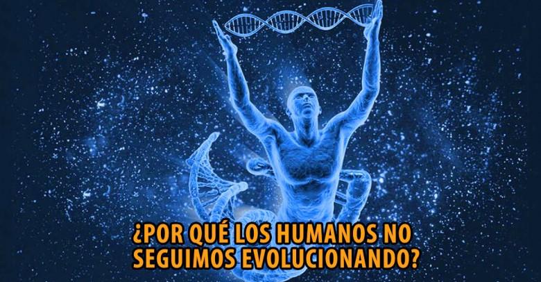 Por qué lo monos siguen siendo monos y otras preguntas sobre la teoría de la evolución