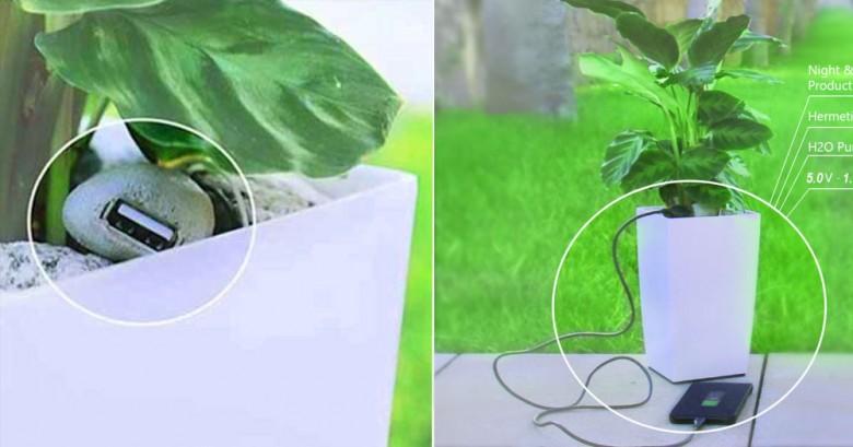 Esta es la manera mas ecologica de recargar tu telefono