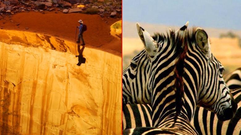 Increíbles imágenes de la naturaleza que parecen retocadas