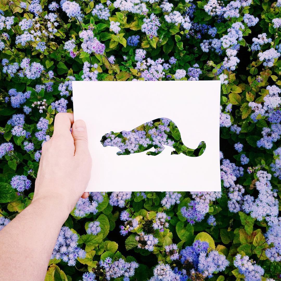 siluetas-animales-paisajes-naturales-nikolai-tolsty-11