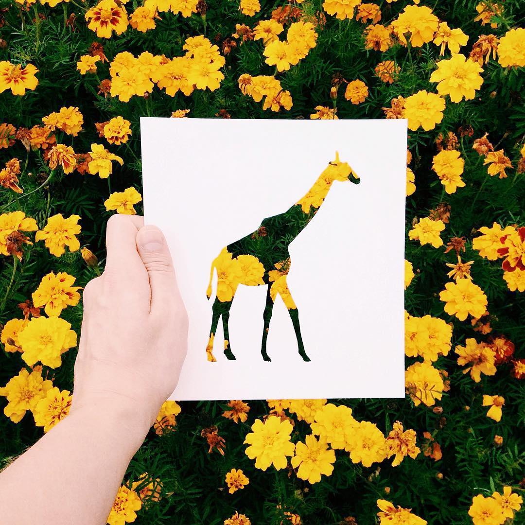 siluetas-animales-paisajes-naturales-nikolai-tolsty-13