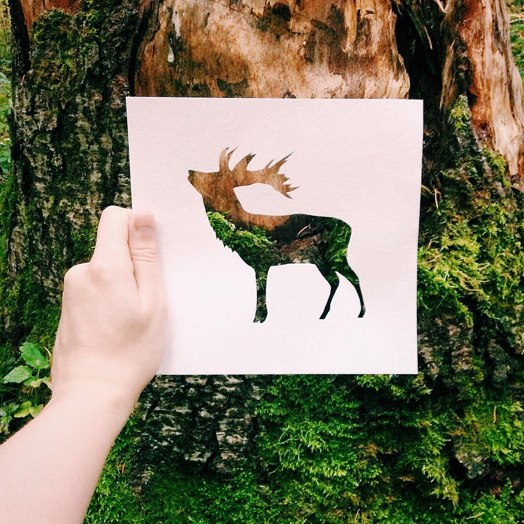 siluetas-animales-paisajes-naturales-nikolai-tolsty-8