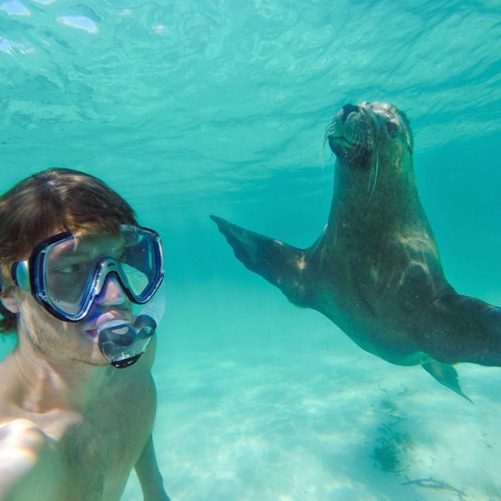 Hombre-se-toma-selfies-con-animales-3-730x730