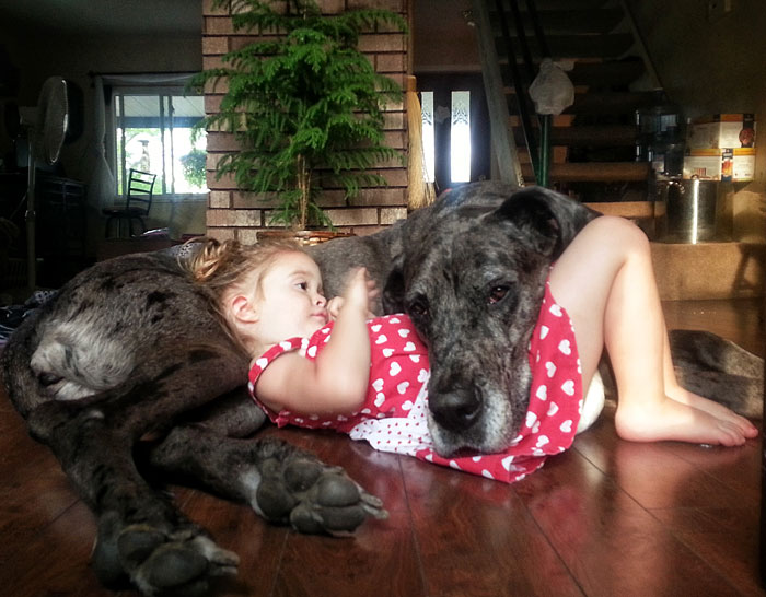 cute-big-dogs-and-babies-5