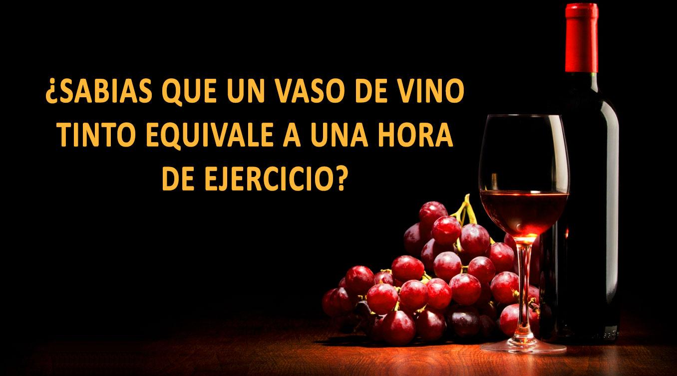 ¿Sabias que un vaso de vino tinto equivale a una hora de ejercicio?