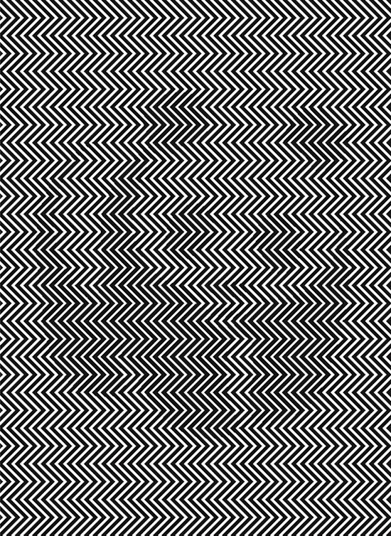 Puedes-ver-que-se-esconde-en-esta-imagen-01
