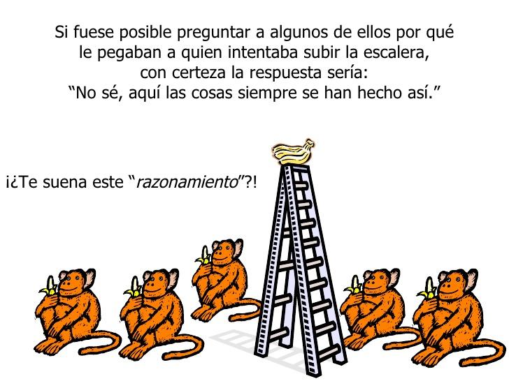 Resistencia-al-cambio-la-parábola-de-los-5-monos-1
