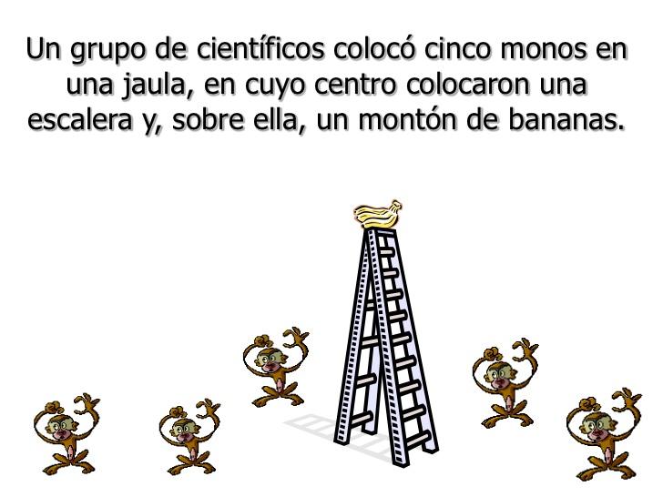 Resistencia-al-cambio-la-parábola-de-los-5-monos-2