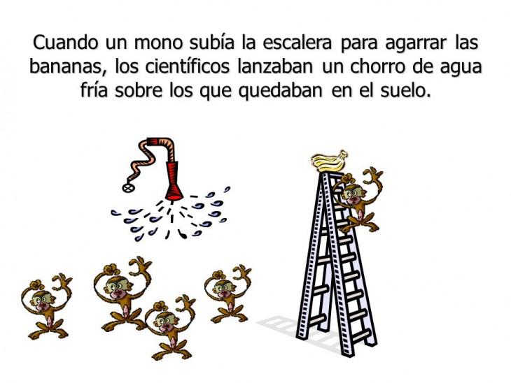 Resistencia-al-cambio-la-parábola-de-los-5-monos-4-730x548