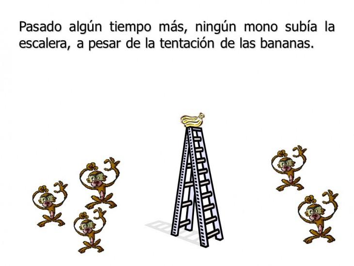 Resistencia-al-cambio-la-parábola-de-los-5-monos-6-730x548