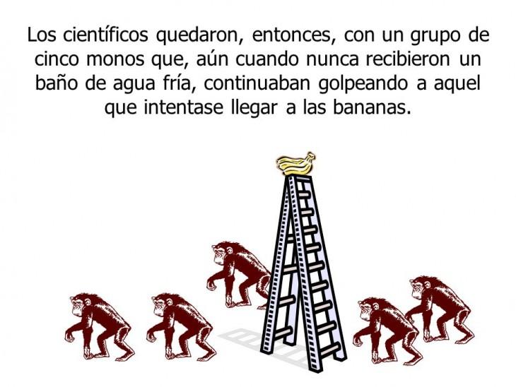 Resistencia-al-cambio-la-parábola-de-los-5-monos-8-730x548
