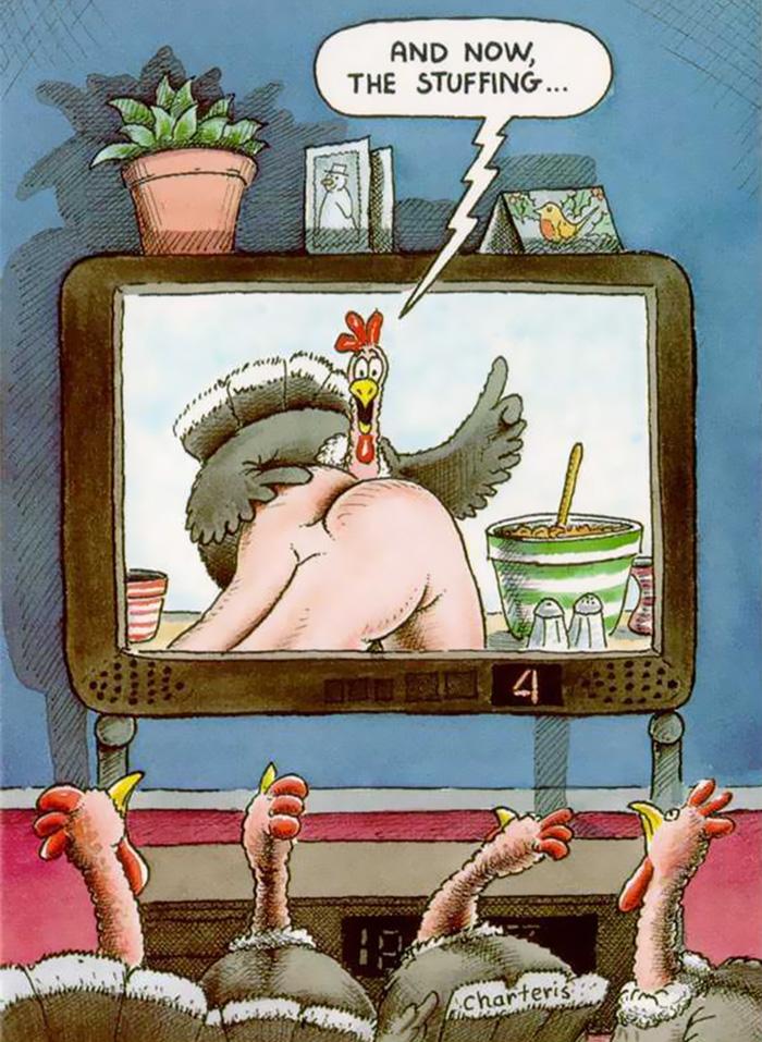 ilustraciones maltrato animal (15)
