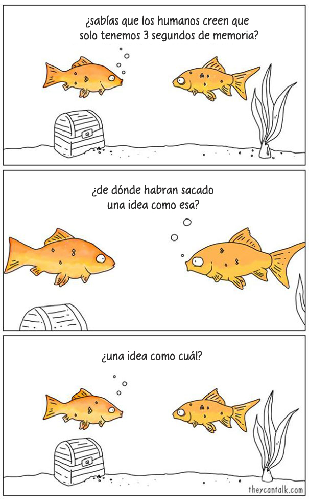 comics-si-animales-hablaran-jimmy-craig-10