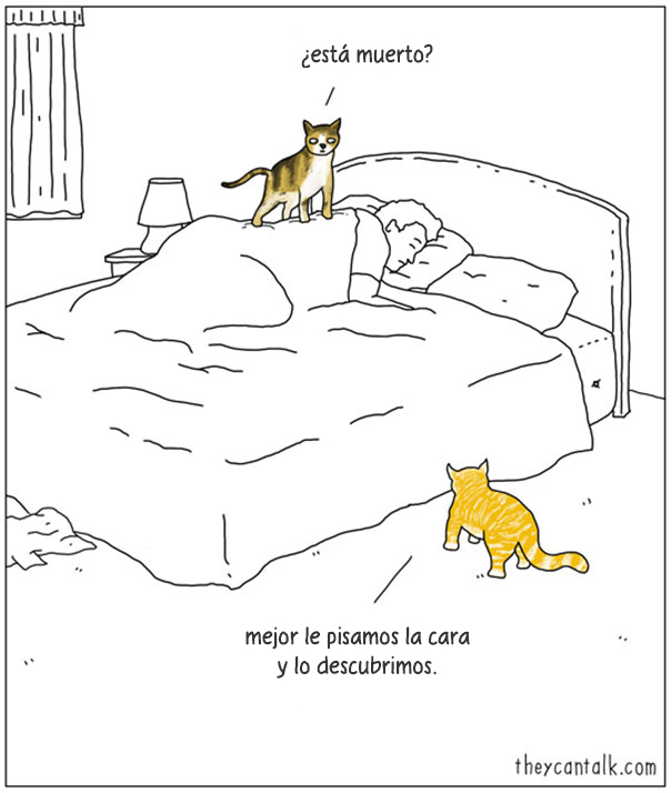 comics-si-animales-hablaran-jimmy-craig-3