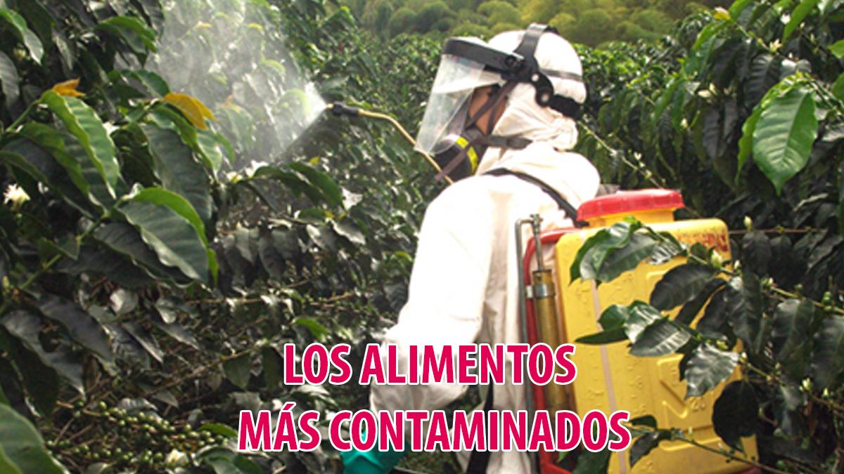 Los alimentos más contaminados. ¡Qué sorpresa!